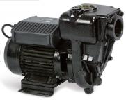 Piusi E 300 - высокопроизводительный насос для ДТ 300 л/мин