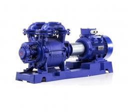 Вакуумный водокольцевой насос Hydro-Vacuum PW.4.13.1.1010.5 5.5кВт